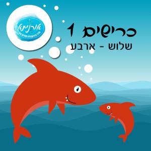 אורניתא כרישים2