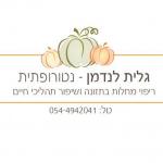 לוגו גלית